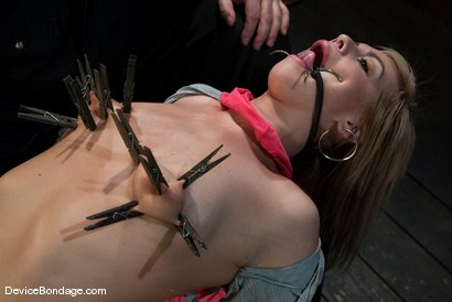 Photo number 10 from Tara Lynn Fox   Innocence so lost.. shot for Device Bondage on Kink.com. Featuring Tara Lynn Foxx in hardcore BDSM & Fetish porn.
