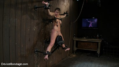 Photo number 9 from Felony <br> You have NEVER seen anything like this before.<br>Countdown to Relaunch-13 of 20 shot for Device Bondage on Kink.com. Featuring Felony in hardcore BDSM & Fetish porn.