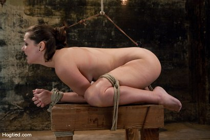 Photo number 10 from Bound, Gagged and DP'd shot for Hogtied on Kink.com. Featuring Bobbi Starr in hardcore BDSM & Fetish porn.