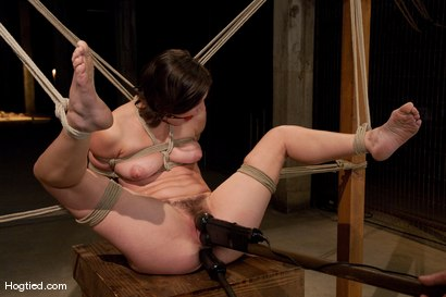 Photo number 6 from Bound, Gagged and DP'd shot for Hogtied on Kink.com. Featuring Bobbi Starr in hardcore BDSM & Fetish porn.