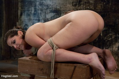 Photo number 8 from Bound, Gagged and DP'd shot for Hogtied on Kink.com. Featuring Bobbi Starr in hardcore BDSM & Fetish porn.