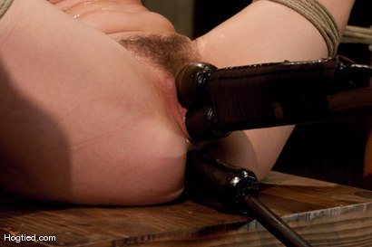 Photo number 7 from Bound, Gagged and DP'd shot for Hogtied on Kink.com. Featuring Bobbi Starr in hardcore BDSM & Fetish porn.