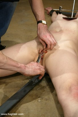 Photo number 11 from Lorelei Lee shot for Hogtied on Kink.com. Featuring Lorelei Lee in hardcore BDSM & Fetish porn.