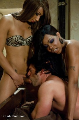 Photo number 8 from The Maltese Falcon of Porn <br> On the hunt for a hit man shot for TS Seduction on Kink.com. Featuring Sexy Jade, Honey FoXXX and Vince Ferelli in hardcore BDSM & Fetish porn.