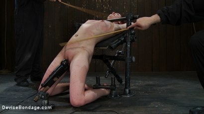 Photo number 13 from Love your cane marks. shot for Device Bondage on Kink.com. Featuring Lilla Katt in hardcore BDSM & Fetish porn.