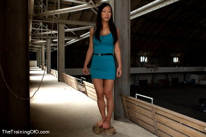 Photo number 1 from The Training of Tia Ling, Day One shot for The Training Of O on Kink.com. Featuring Tia Ling and Wolf Hudson in hardcore BDSM & Fetish porn.