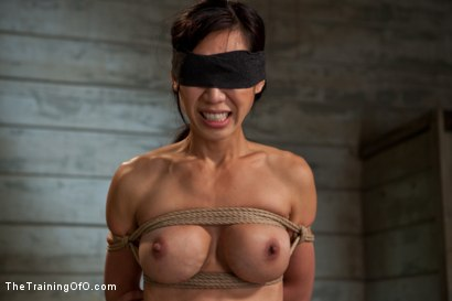 Photo number 7 from The Training of Tia Ling, Day Two shot for The Training Of O on Kink.com. Featuring Tia Ling and Maestro in hardcore BDSM & Fetish porn.