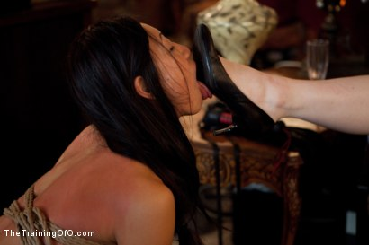 Photo number 10 from The Training of Tia Ling, Day Four shot for The Training Of O on Kink.com. Featuring Tia Ling in hardcore BDSM & Fetish porn.