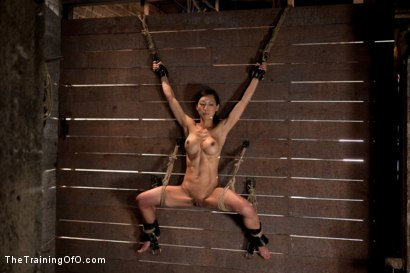 Photo number 1 from The Training of Tia Ling, Day Three shot for The Training Of O on Kink.com. Featuring Tia Ling and Wolf Hudson in hardcore BDSM & Fetish porn.
