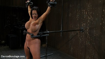 Photo number 9 from Richelle Ryan<br>Is that Snooky? shot for Device Bondage on Kink.com. Featuring Richelle Ryan in hardcore BDSM & Fetish porn.