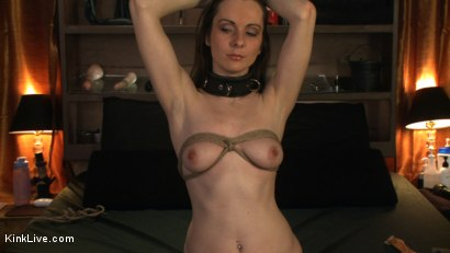 Photo number 5 from Winter Sky is Horny and Lonely! shot for Kink Live on Kink.com. Featuring Winter Sky in hardcore BDSM & Fetish porn.