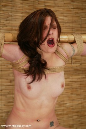 Photo number 13 from Carly shot for Wired Pussy on Kink.com. Featuring Carly in hardcore BDSM & Fetish porn.
