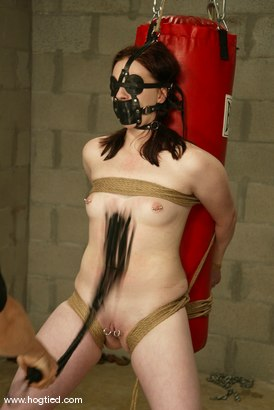 Photo number 7 from Claire Adams shot for Hogtied on Kink.com. Featuring Claire Adams in hardcore BDSM & Fetish porn.