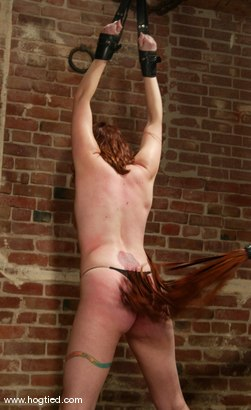 Photo number 5 from Dusty and Torque shot for Hogtied on Kink.com. Featuring Torque and Dusty in hardcore BDSM & Fetish porn.