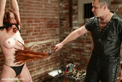Photo number 3 from Dusty and Torque shot for Hogtied on Kink.com. Featuring Torque and Dusty in hardcore BDSM & Fetish porn.