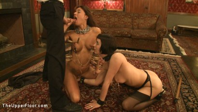Photo number 14 from Fresh Meat Monday: Gia DiMarco shot for The Upper Floor on Kink.com. Featuring Cherry Torn and Gia DiMarco in hardcore BDSM & Fetish porn.