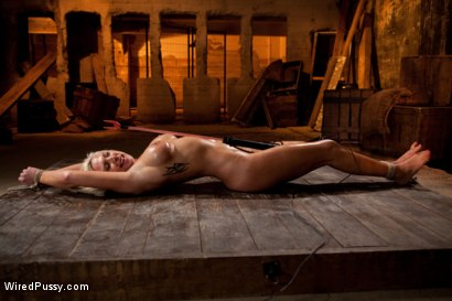 Photo number 14 from Beautiful Blonde with Big Tits gets Oiled up and Used as a Cum Canvas shot for Wired Pussy on Kink.com. Featuring Skylar Price and Princess Donna Dolore in hardcore BDSM & Fetish porn.