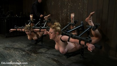 Photo number 5 from Part 1 of 4 of the April Live show. shot for Device Bondage on Kink.com. Featuring Felony, Isis Love and Dee Williams in hardcore BDSM & Fetish porn.