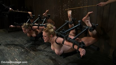 Photo number 7 from Part 1 of 4 of the April Live show. shot for Device Bondage on Kink.com. Featuring Felony, Isis Love and Dee Williams in hardcore BDSM & Fetish porn.