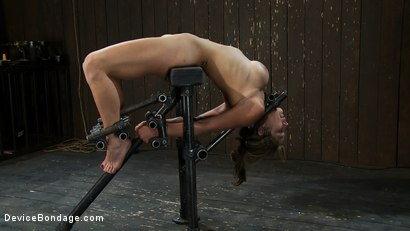 Photo number 3 from Part 3 of 4 of the <br>April Live show. shot for Device Bondage on Kink.com. Featuring Felony, Isis Love and Dee Williams in hardcore BDSM & Fetish porn.