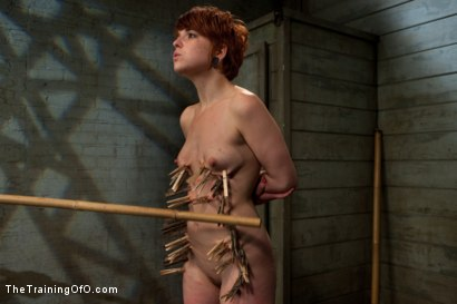Photo number 9 from The Training of Juliette, Day Two shot for The Training Of O on Kink.com. Featuring Juliette March and Wolf Hudson in hardcore BDSM & Fetish porn.
