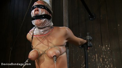 Photo number 12 from ASS Fucked into  Oblivion shot for Device Bondage on Kink.com. Featuring Rain DeGrey in hardcore BDSM & Fetish porn.