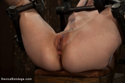 Photo number 6 from Q. How many girls can we make cry from intense multiple orgasms?<br>A. All of them... shot for Device Bondage on Kink.com. Featuring Seda in hardcore BDSM & Fetish porn.