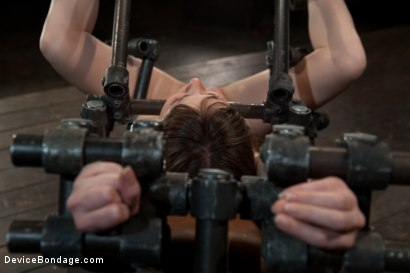 Photo number 7 from Q. How many girls can we make cry from intense multiple orgasms?<br>A. All of them... shot for Device Bondage on Kink.com. Featuring Seda in hardcore BDSM & Fetish porn.
