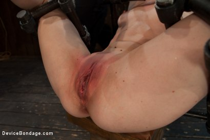 Photo number 13 from Q. How many girls can we make cry from intense multiple orgasms?<br>A. All of them... shot for Device Bondage on Kink.com. Featuring Seda in hardcore BDSM & Fetish porn.