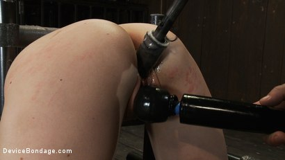 Photo number 11 from OMEGA fucks another tiny brunette into sub space! shot for Device Bondage on Kink.com. Featuring Seda in hardcore BDSM & Fetish porn.