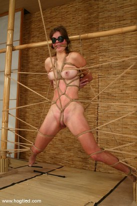 Photo number 3 from Alison shot for Hogtied on Kink.com. Featuring Danielle in hardcore BDSM & Fetish porn.