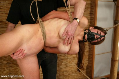 Photo number 5 from Alison shot for Hogtied on Kink.com. Featuring Danielle in hardcore BDSM & Fetish porn.