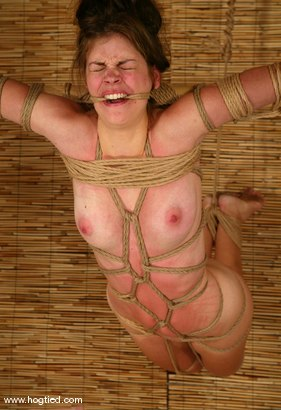 Photo number 14 from Alison shot for Hogtied on Kink.com. Featuring Danielle in hardcore BDSM & Fetish porn.