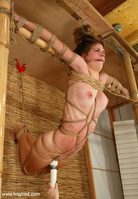 Photo number 15 from Alison shot for Hogtied on Kink.com. Featuring Danielle in hardcore BDSM & Fetish porn.