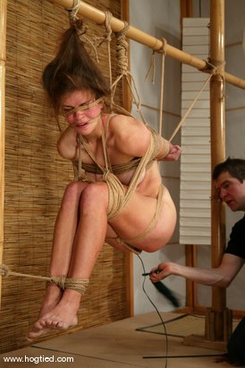 Photo number 9 from Alison shot for Hogtied on Kink.com. Featuring Danielle in hardcore BDSM & Fetish porn.