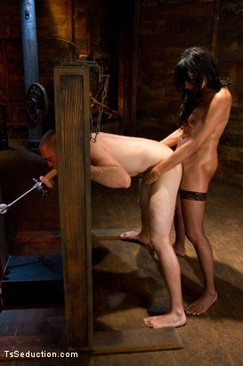 Photo number 6 from Silence is denial shot for TS Seduction on Kink.com. Featuring Yasmin Lee and Rocky in hardcore BDSM & Fetish porn.