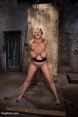 Photo number 14 from Katie Kox and her Monster tits are introduced to Hogtied<br> the meet and greet. shot for Hogtied on Kink.com. Featuring Katie Kox in hardcore BDSM & Fetish porn.