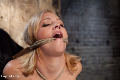 Photo number 6 from Katie Kox and her Monster tits are introduced to Hogtied<br> the meet and greet. shot for Hogtied on Kink.com. Featuring Katie Kox in hardcore BDSM & Fetish porn.
