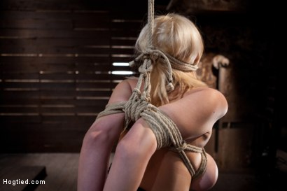 Photo number 7 from Katie Kox and her Monster tits are introduced to Hogtied<br> the meet and greet. shot for Hogtied on Kink.com. Featuring Katie Kox in hardcore BDSM & Fetish porn.