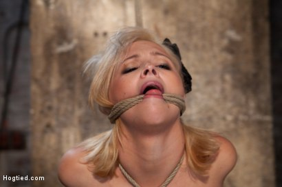 Photo number 10 from Katie Kox and her Monster tits are introduced to Hogtied<br> the meet and greet. shot for Hogtied on Kink.com. Featuring Katie Kox in hardcore BDSM & Fetish porn.
