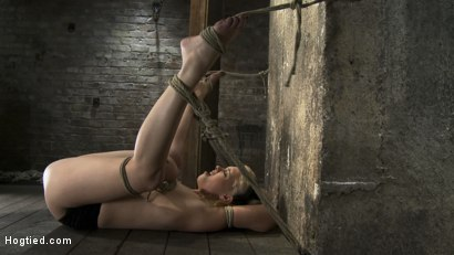 Photo number 8 from Huge bound breasts<br> and plenty of squirting. shot for Hogtied on Kink.com. Featuring Katie Kox in hardcore BDSM & Fetish porn.