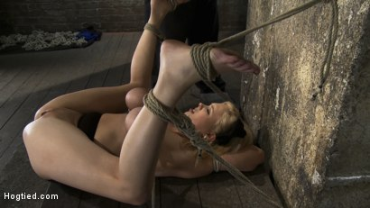 Photo number 6 from Huge bound breasts<br> and plenty of squirting. shot for Hogtied on Kink.com. Featuring Katie Kox in hardcore BDSM & Fetish porn.