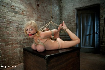 Photo number 1 from I'm sorry, do your massively tied up Boobs hurt when you lie on them? <br>Hows the tickling feel? shot for Hogtied on Kink.com. Featuring Katie Kox in hardcore BDSM & Fetish porn.