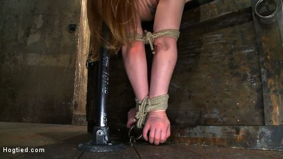 Photo number 3 from Huge Nipples Tied and Stretched. <br>Double penetrated to Orgasm! shot for Hogtied on Kink.com. Featuring Madison Young in hardcore BDSM & Fetish porn.