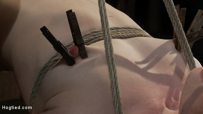 Photo number 4 from CATEGORY 5 SUSPENSION<BR>Two ropes, one though her shaved pussy<br>and a cock in her mouth, nice! shot for Hogtied on Kink.com. Featuring Madison Young in hardcore BDSM & Fetish porn.