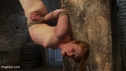Photo number 11 from Redhead suspended by ankles with rope, face fucked<br>Flogged until her skin is bright pink. shot for Hogtied on Kink.com. Featuring Madison Young in hardcore BDSM & Fetish porn.