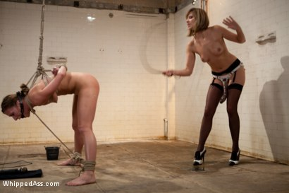 Photo number 7 from Lesbian Revenge shot for Whipped Ass on Kink.com. Featuring Vivienne Del Rio, Princess Donna Dolore, Maitresse Madeline Marlowe  and Ariel X in hardcore BDSM & Fetish porn.