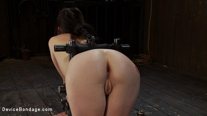 Photo number 3 from Q: How do you make a kitten scream? shot for Device Bondage on Kink.com. Featuring Lindy Lane in hardcore BDSM & Fetish porn.