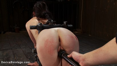 Photo number 10 from Q: How do you make a kitten scream? shot for Device Bondage on Kink.com. Featuring Lindy Lane in hardcore BDSM & Fetish porn.