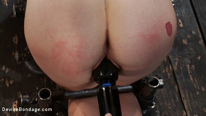 Photo number 13 from Q: How do you make a kitten scream? shot for Device Bondage on Kink.com. Featuring Lindy Lane in hardcore BDSM & Fetish porn.